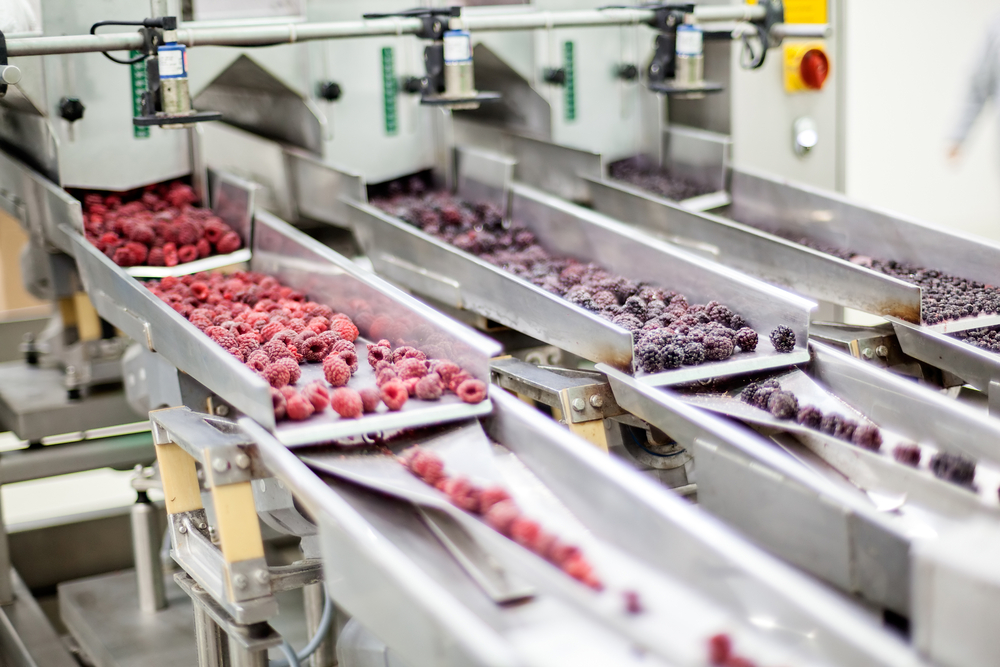 The Major Benefits of Utilising the Services of Food Contract Manufacturing Companies article image by Omniblend